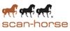 Scan Horse